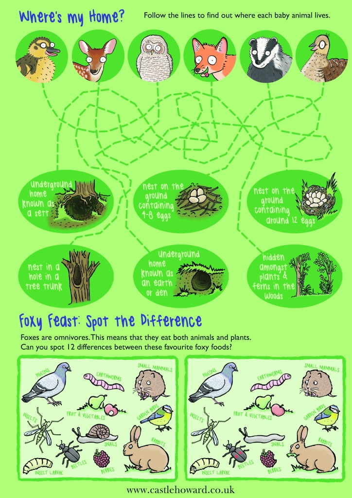 Where's my home, match the baby animal to its home illustrated puzzle activitiy by emma metcalfe