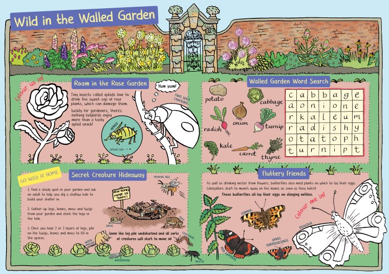 wild-in-the-walled-garden-illutrated-children's-garden-nature-activities-by-emma-metcalfe-for-castle-howard