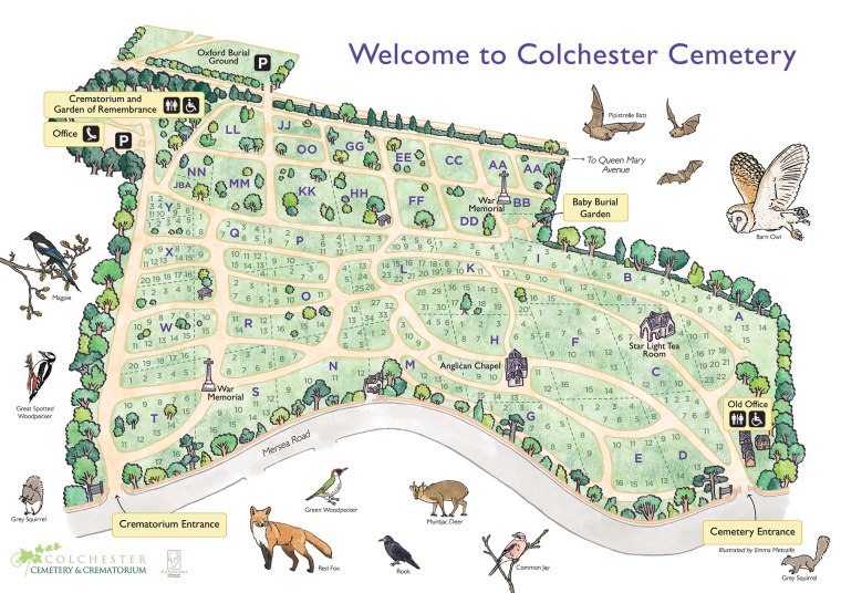Bespoke illustrated hand drawn map of Colchester Cemetery showing wildlife species living there by map illustrator Emma Metcalfe