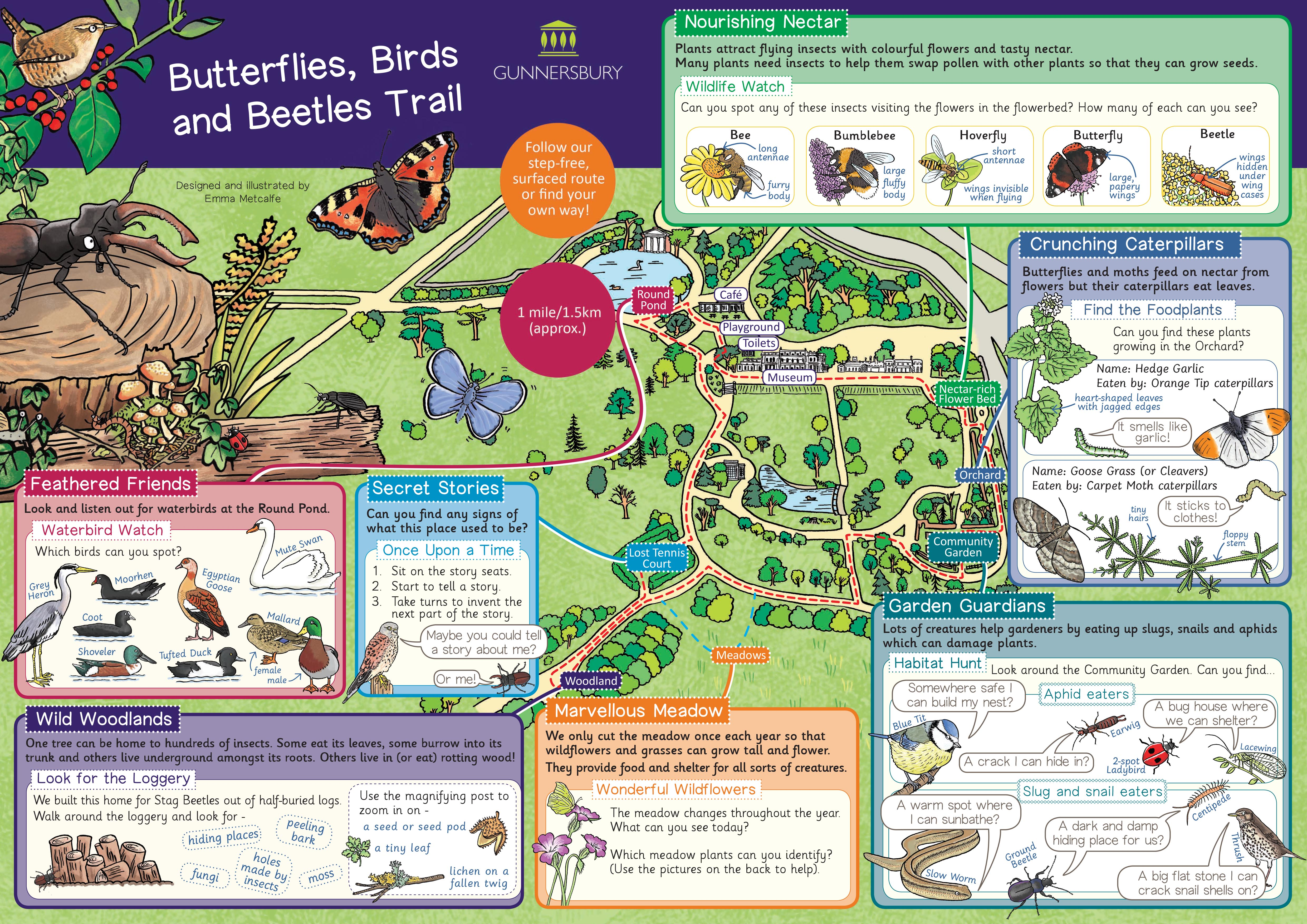 Illustrated children's trail of a park, nature-themed map trail by illustrator Emma Metcalfe